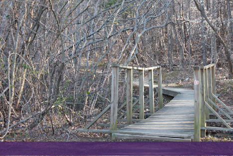 Providing Access to Nature at Fort Belvoir